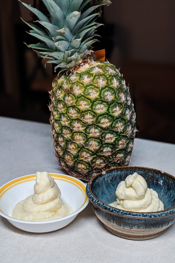 homemade disneyland dole whip