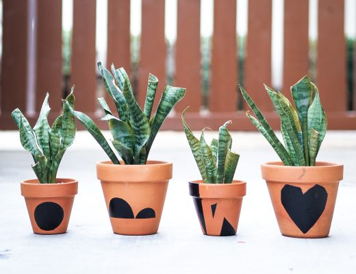 DIY customized terracotta pots